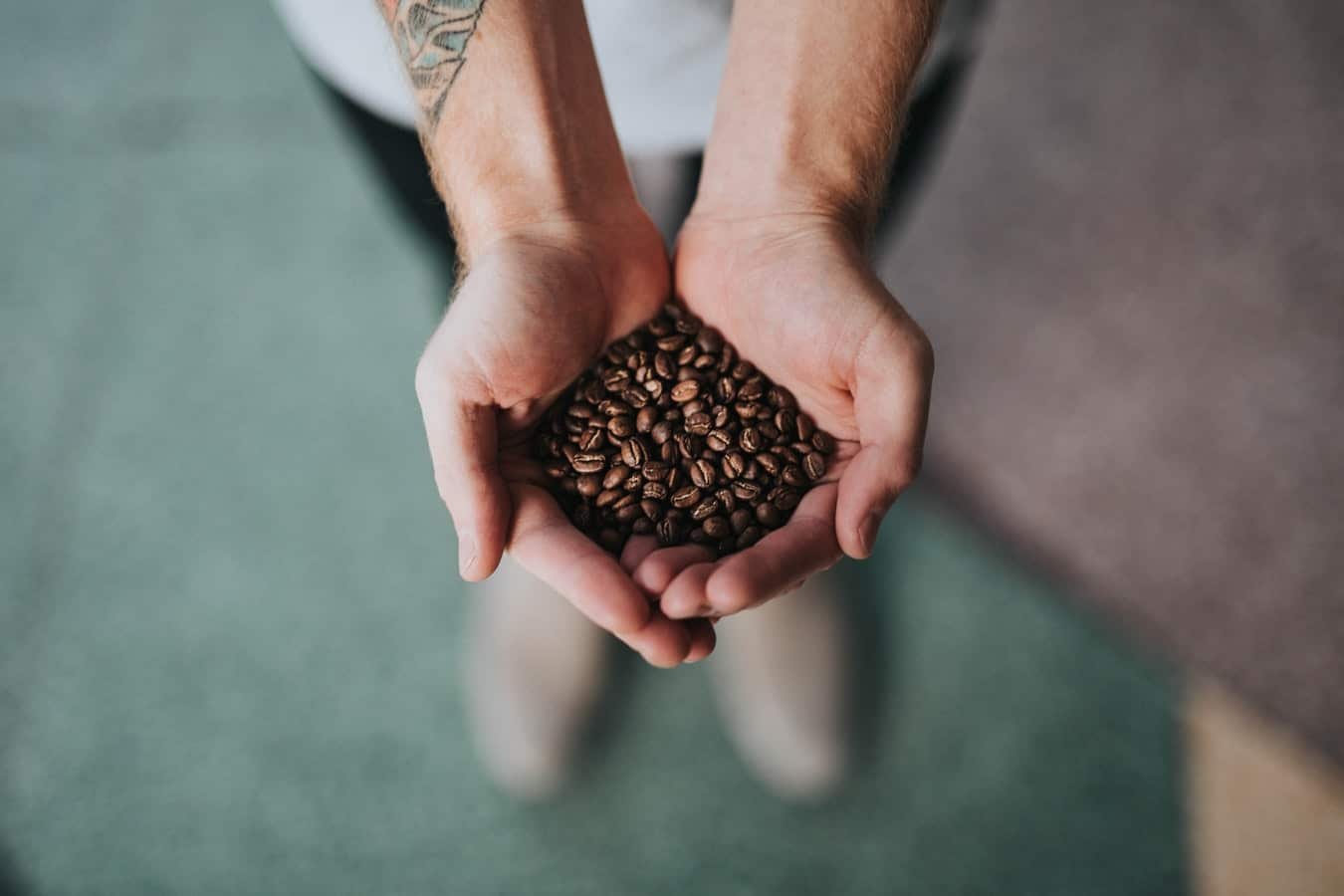 Hands cupped together holding coffee beans