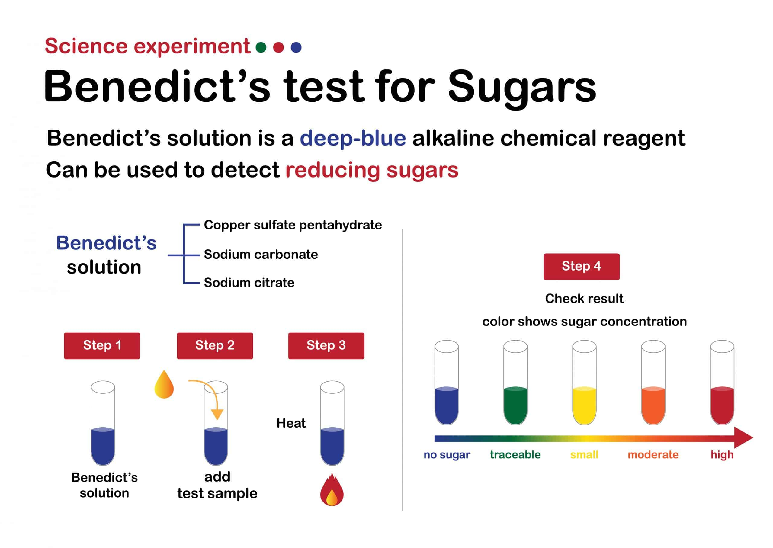 Science experiment diagram show Benedict's test for sugar determination with result analysis.