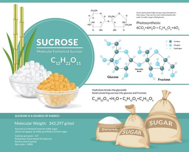 Vector illustration showing chemistry of sucrose