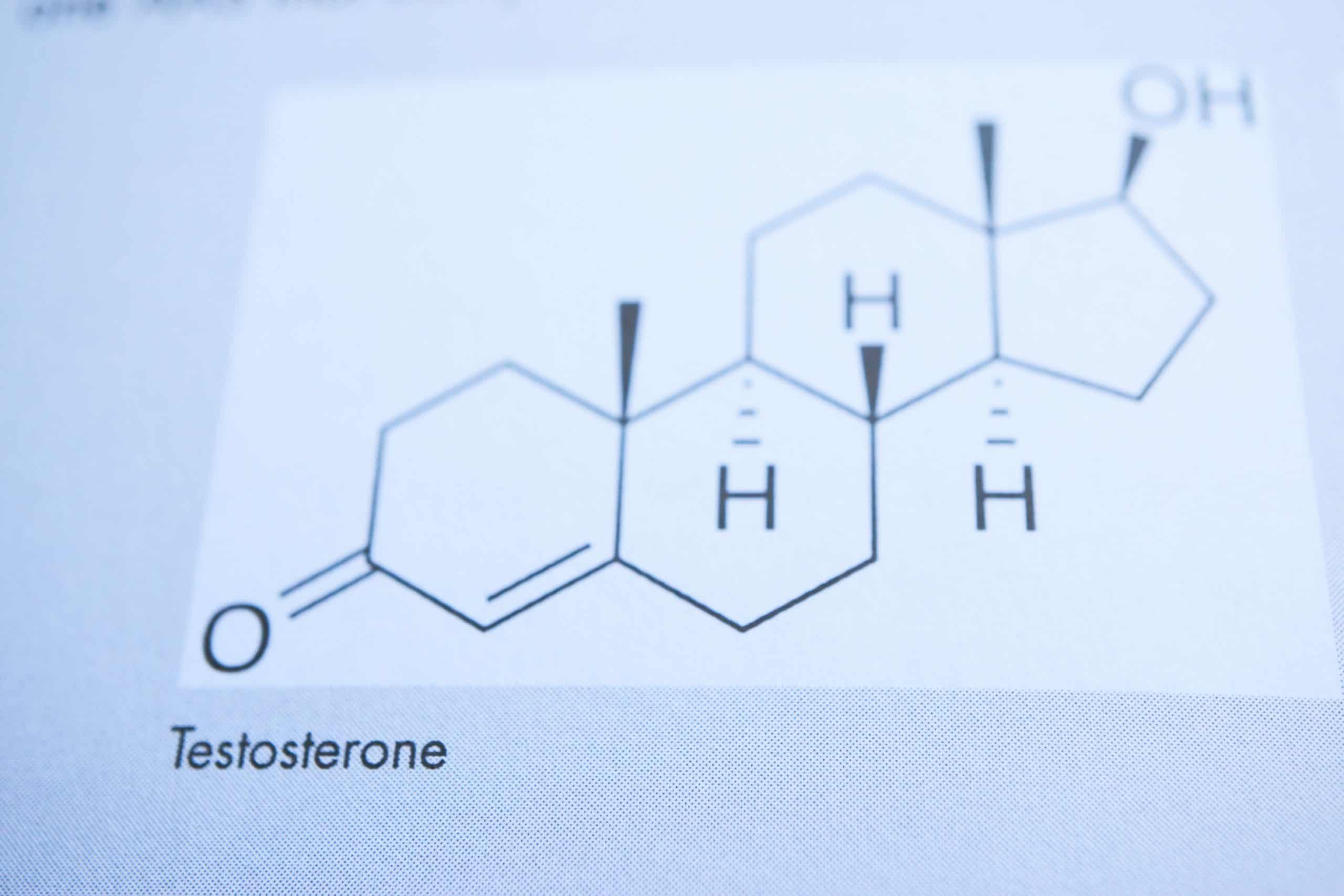 Chemical diagram of testosterone hormone